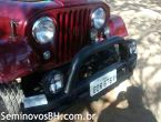 Ford Jeep Willys 3.0 12V jeep