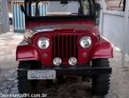 Ford Jeep Willys 1.6 8V