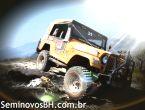Jeep CJ5 2.6 8V WILLYS
